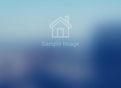 community background